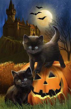 Keep black cats safe on Halloween! - Keep black cats safe on Halloween! Retro Halloween, Image Halloween, Halloween Pictures, Cute Halloween, Halloween Black Cat, Halloween Tattoo, Halloween Drawings, Halloween Quotes, Halloween Night