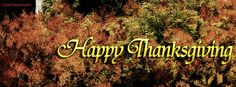 Happy Thanksgiving Facebook Cover CoverLayout.com Thanksgiving Facebook Covers, Thanksgiving Quotes, Thanksgiving Leftovers, Thanksgiving Crafts, Thanksgiving Decorations, Happy Thanksgiving, Face Book, Fb Covers, Neon Signs