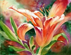 Susan Crouch - Lily Light - Day Lily~~This is a very pretty painting. Lily Painting, Watercolour Painting, Watercolor Flowers, Painting & Drawing, Watercolours, Art Floral, Day Lilies, Summer Art, Art Techniques