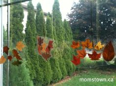 Autumn leaf window hanging - leaves between 2 layers of sticky back plastic (contact paper)