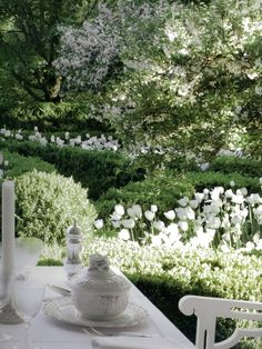 What a gorgeous garden of white and green