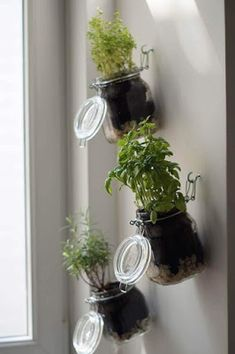 DIY herb garden, step by step instructions, indoor herb garden yourself . - DIY herb garden, step by step instructions, indoor herb garden yourself … - Vertical Herb Gardens, Vertical Garden Diy, Diy Herb Garden, Garden Steps, Herb Gardening, Organic Gardening, Garden Guide, Easy Garden, Wall Herb Garden Indoor