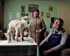 Новорожденная овечка, 2008 год. Из серии «Причудливые картинки».