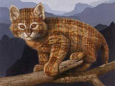 Sanatta yeni boyut: Ekoseli hayvan resimleri. Galeri ajanimo.com'da.. #ajanimo #ajanbrian #hayvan #animal #cat #kedi #art