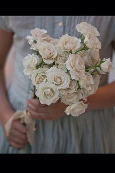Rosas Pitimini