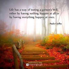 Can you relate to this?  #quote #coelho #life #nature