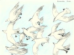 SEAGULLS original ink sketch // animal drawings by elisavetasivas