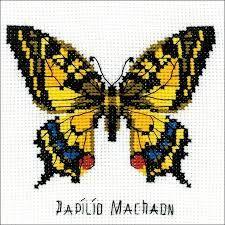 Risultati immagini per cross stitch butterfly