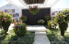 If Gucci did gardens... Inspired by Rodolfo Gucci's famous Flora print from 1966. #gardening #gardendesign #RHSChelsea