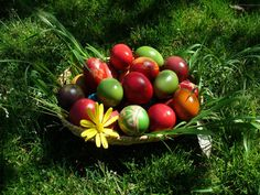 Free Easter SMS, Easter Love Messages & Romantic Easter Messages all are in one pack. Easter Greetings, easter sayings, happy Easter to you and your family. Egg Basket, Easter Baskets, Happy Easter Wallpaper, Holiday Wallpaper, Orthodox Easter, Hd Nature Wallpapers, Desktop Backgrounds, Easter 2015, Coloring Easter Eggs