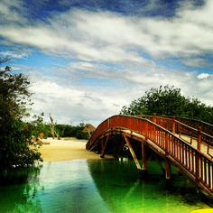 Been here and snorkled this too!! The bridge. Hacienda Tres Rios