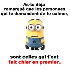 feel in the blank ! Minions, Jw Humor, Troll Face, Funny Times, Powerful Words, Funny Quotes, Funny Pictures, Jokes, Phrases