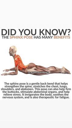 Yoga Ashtanga, Yoga Bewegungen, Sup Yoga, Yoga Meditation, Kundalini Yoga, Yoga Flow, Fitness Workouts, Yoga Fitness, Fitness Tips
