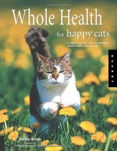 Whole Health for Happy Cats: A Guide to Keeping Your Cat Naturally Healthy, Happy, and Well-Fed (Quarry Book S.) by Sandy Arora, http://www.amazon.com/dp/1592532667/ref=cm_sw_r_pi_dp_M6ecrb0DYG6A8