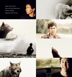 """""""La Push Shape-shifters: Quil Ateara V """" Top right is Jared, it'd be nice if people stopped mixing up the wolves and actors by now."""