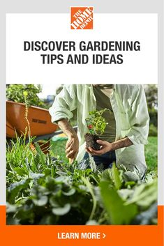 You'll be on your way to a lush vegetable and herb garden in no time with help from The Home Depot. We have helpful how-to and starter guides for you to garden with confidence. And with a wide selection of gardening essentials, find the perfect gift for Mother's Day. Explore our resources and tips to inspire your spring DIY. Tap to get growing with The Home Depot today. Love Garden, Garden Club, Garden Tips, Herb Garden, Garden Plants, Garden Ideas, Terraced Vegetable Garden, Vegetable Garden Design, Backyard Deck Ideas On A Budget