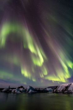 Wildlife Nature, Northern Lights, Landscapes, Photography, Travel, Into The Wild, Fotografie, Paisajes, Photograph