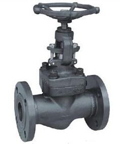 Forged Carbon Steel Flanged Gas Globe Valve from China manufacturer - Hangna Gate Valve, Steel Gate, Forged Steel, Globe, Stainless Steel, Boiler, Workshop, Engineering, Industrial