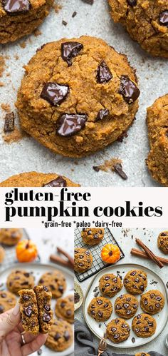 These Gluten Free Pumpkin Cookies are soft, chewy and full of cozy fall spices and chocolate chips. You can easily make them in just one bowl with simple pantry ingredients and makes a delicious lunch box treat or after dinner dessert. They are gluten-free, dairy-free, grain free and refined -sugar free. Freezer-friendly & kid-friendly! #pumpkincookies #dairyfree #glutenfree #pumpkin