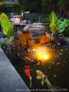 Pond Landscaping On Pinterest Backyard Ponds Ponds And Water Features