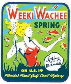 Weeki Wachee Springs- FL  Florida    Vintage 1950's-Style  Travel Decal/Sticker