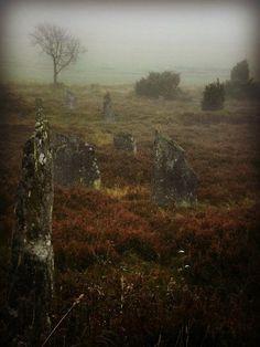 Viking cemetery in Färjås, Sweden.