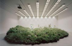 Over 10,000 plants used to create grassland inside Australian Pavilion