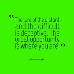 """""""The lure of the distant and the difficult is deceptive. The great opportunity is where you are."""" — John Burroughs"""