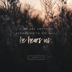 Bible verses about daily prayer. Do you feel the need to pray? Let's check out what God's word say Scripture Verses, Bible Verses Quotes, Bible Scriptures, Faith Quotes, John 5 14, La Sainte Bible, Daily Bible, Favorite Bible Verses, Verse Of The Day