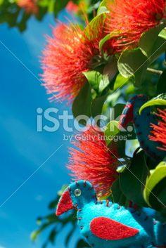 Kiwiana Christmas, A Pukeko Decoration in Pohutkawa Flowers Royalty Free Stock Photo Christmas Icons, Christmas Time, Kiwiana, Image Now, New Zealand, Royalty Free Stock Photos, Decoration, Flowers, Plants