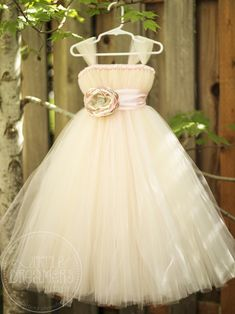 tutu dress for flower girl :) so cute!  Little Dreamer's Tutus - If you ever get a girl from one of your friends or future inlaws!!