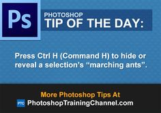 "Press Ctrl H (Command H) to hide or reveal a selection's ""marching ants"". Adobe Photoshop, Learn Photoshop, Photoshop Illustrator, Photoshop Photos, Photoshop Elements, Photoshop Tutorial, Photoshop Actions, Photoshop Ideas, Lightroom"