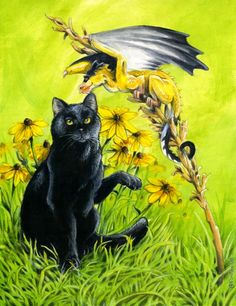 A commission of a friend's cat encountering a Goldfinch bird dragon. acrylic on illustration board. The Tease Dragon Cat, Big Dragon, Fantasy Dragon, Fantasy Art, Fantasy Images, Magical Creatures, Fantasy Creatures, Black Cat Art, Black Cats