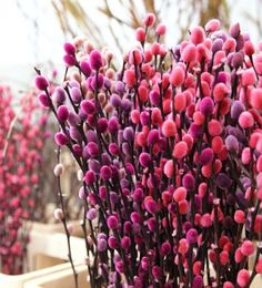 Enchanted Florist, Flower Arrangements, Greenery, Bloom, Spring, Floral, Flowers, Plants, Floral Arrangements