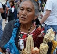 "Mexico Celebrates ""Carnival of Corn"" and Rejects Monsanto."
