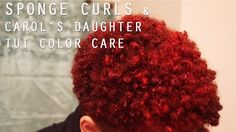 TWA Sponge Method | Carol's Daughter Tui Color Collection (hair color is Shea Moisture Bright Auburn)