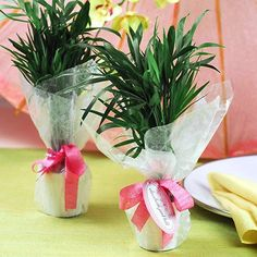 Mini Palm Plant Wedding Favors  How cute is this for shower favors?