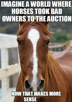 Exactly! And most times, its the person, not the horse who is the problem.