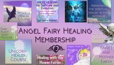 You are invited to join the Angel Fairy Healing Membership!I created this membership as an online healingsanctuary where you can connect with multidimensional spirituality and inspiration! A place where we can create a momentum of higher vibration energy! Connectwith your angels for healing and upliftment through mylarge collection of angel classes thatkeeps growing.