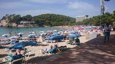 #Menorca invertirá 225.000 euros en 2016 para mejorar el acceso a las #playas - Contenido seleccionado con la ayuda de http://r4s.to/r4s