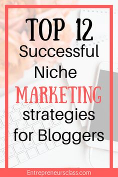 To 12 niche marketing strategies that can help you build more niche blog and increase your earning.