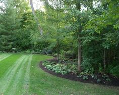 Edge of forest landscaping idea.