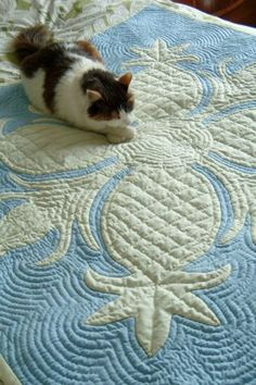 Hawaiian quilt, pineapple design, by Leimomi Oakes - cats and quilts...cats LOVE quilts.