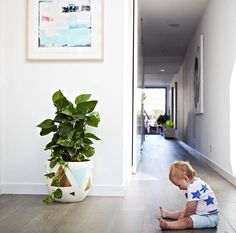 Beautiful entry of stylist Aimee Tarulli of Archer Interiors home Family Room, Home And Family, Interior Styling, Interior Design, Armelle, Entry Hallway, Beautiful Interiors, Home Renovation, My Dream Home