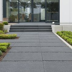 Landscaping For Your Location - How To Choose The Right Plants - House Garden Landscape Modern Landscape Design, Modern Landscaping, Garden Landscaping, Buy Plants, Types Of Plants, Outside Steps, Front Door Steps, Balcony Flooring, Gardening Courses