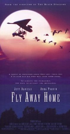 Directed by Carroll Ballard. With Jeff Daniels, Anna Paquin, Dana Delany, Terry Kinney. A father and daughter decide to attempt to lead a flock of orphaned Canada Geese south by air. Birds Flying Away, Bird Flying, Father Goose, Harriet The Spy, Movie Gift, Black Stallion, Flies Away, Columbia Pictures, Home Movies