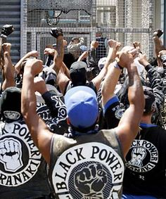 Black Outlaw Motorcycle Clubs | GTA Auckland, New Zealand