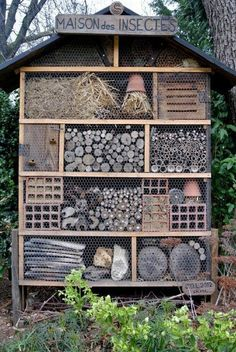 Maison des Insectes   Insect Hotel