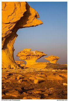 "Aish el-Ghorab ""The Mushrooms"", chalk sculptures, Sahara Beida (White Desert), Egypt"