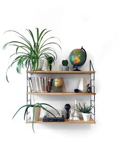 Shelf Decor Ideas - When decorating a shelf, consider your design tastes along with your needs that produce an appearance that is lovely and practical. Decor Color Schemes, Decor, Wood, Interior, Shelf Decor, Wood Shelves, Home Decor, Interior Architecture, Office Interiors